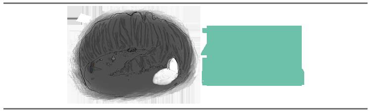 Emma-De-Swaef-Zachte-Planten