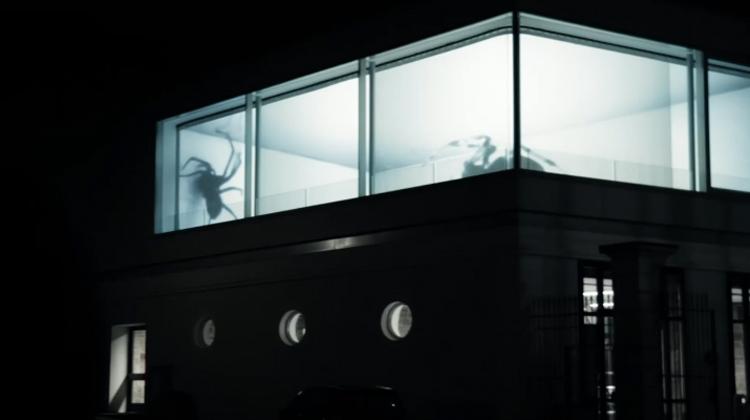 Spider Projection - Friedrich van Schoor