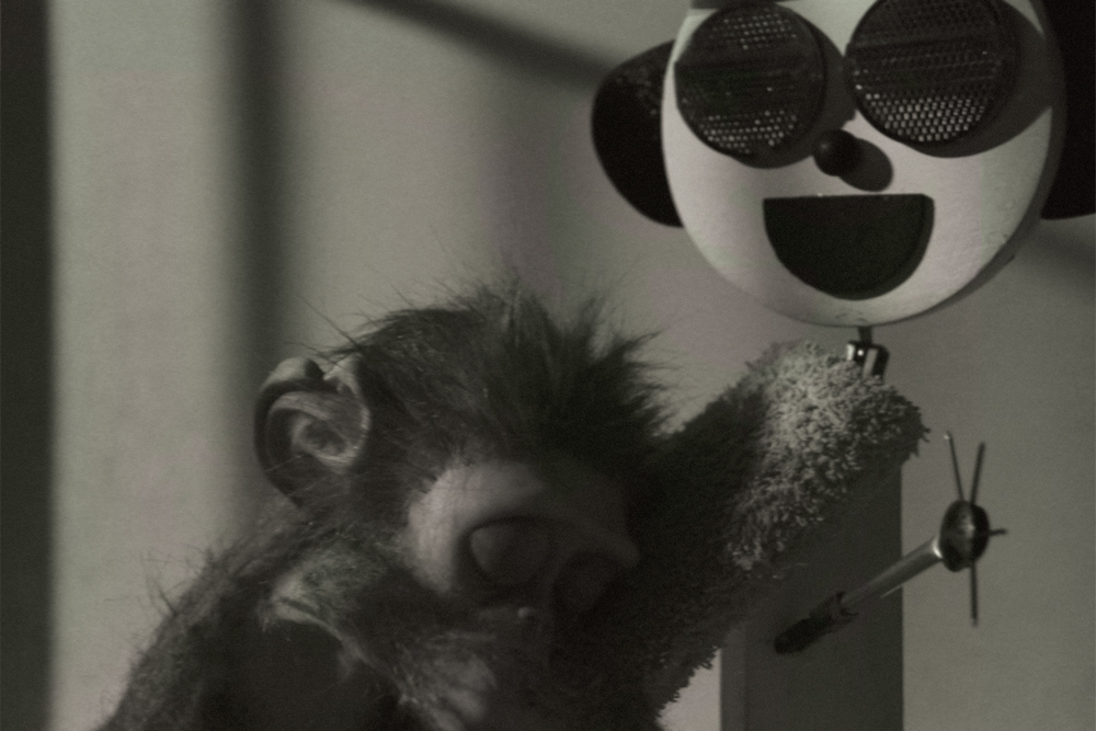 Monkey_Love_Experiments_Will_Anderson_Ainslie_Henderson