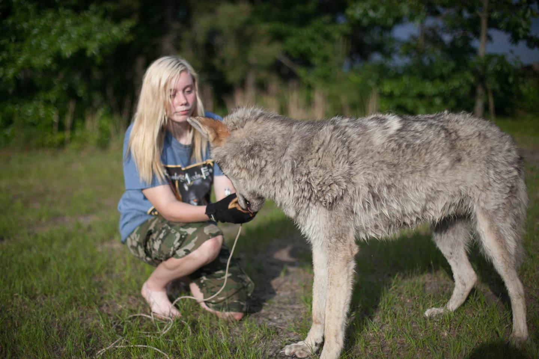 She Wolf Howling Woods-9_o