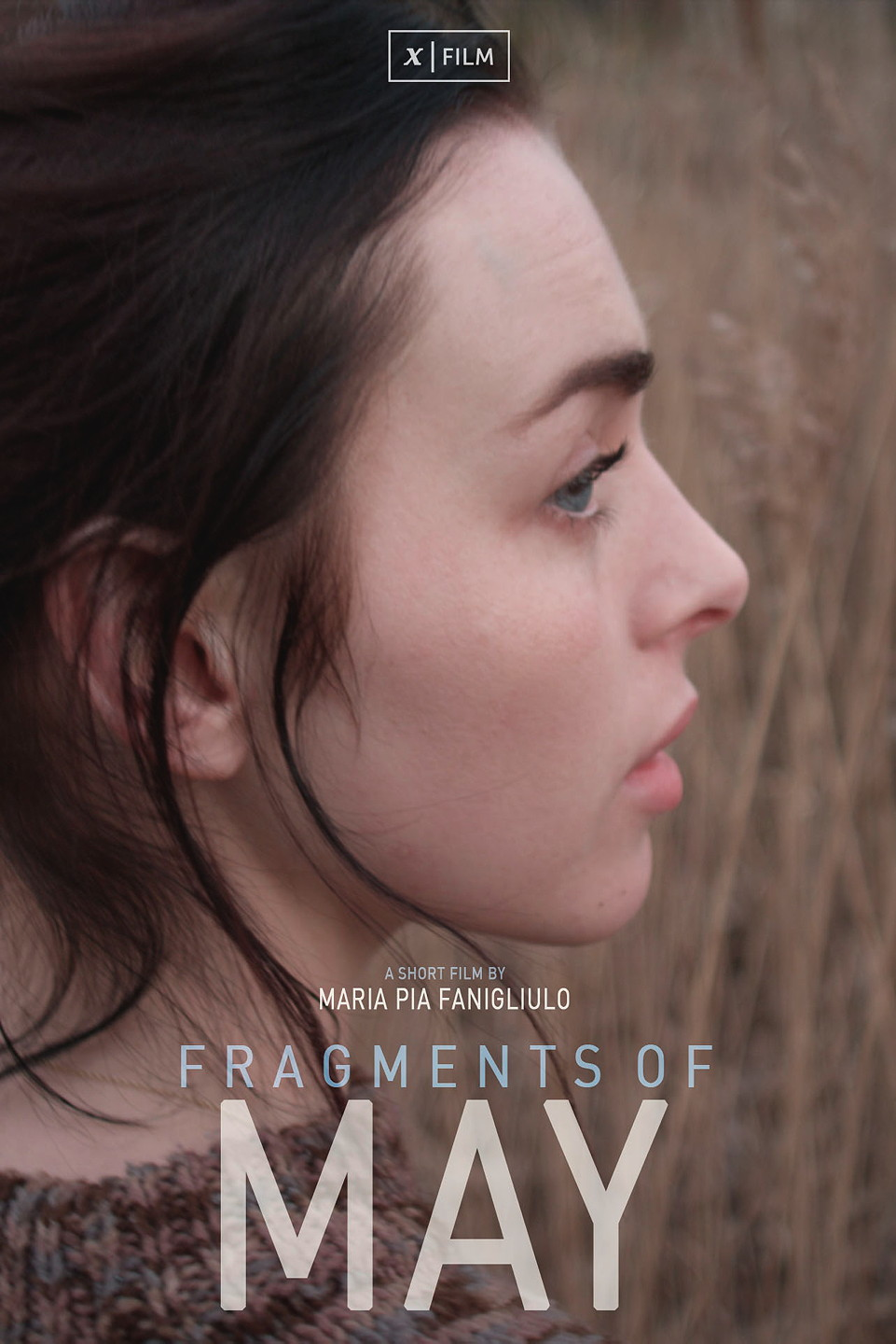 fragments_of_may_poster
