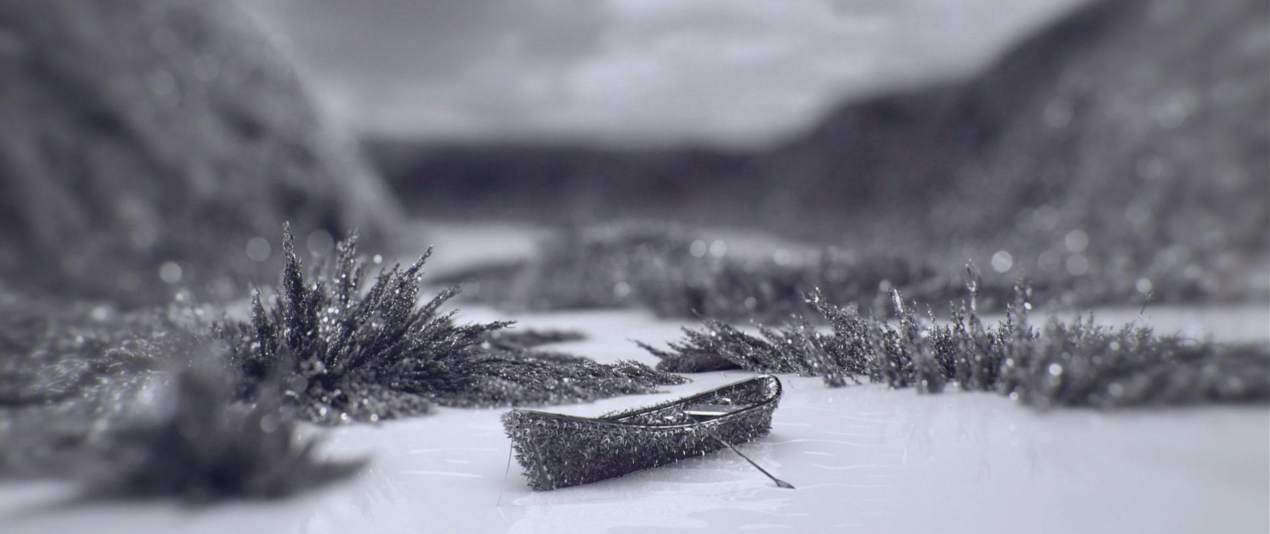 Ferro_Boat