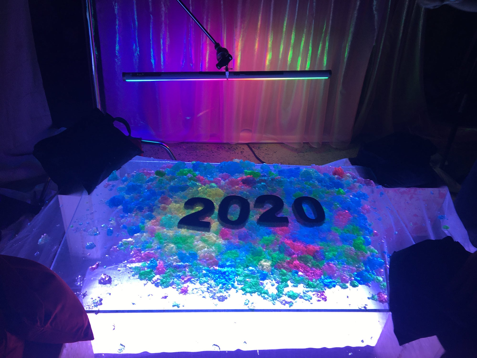 2020 Brain
